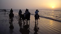 Atlantic Coast Trail Ride Morocco, Essaouira, 4WD, ATV & Off-Road Tours