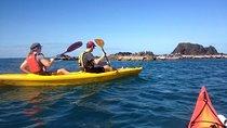 Port Douglas Half-Day Kayak Tour, Port Douglas, Kayaking & Canoeing