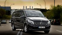 Departure Private Transfer Copenhagen to Copenhagen Port in Luxury Van Tickets
