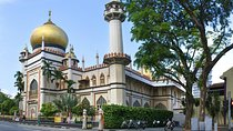 Private Singapore Melting Pot Discovery Tour