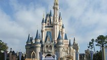 Day trip to Walt Disney World from Tampa, Tampa, Day Trips
