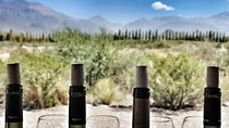 All day, small group, luxury wine tour with gourmet lunch, Mendoza, Wine Tasting & Winery Tours