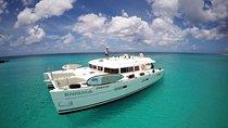 Fun in the Sun Catamaran Day Trip, St Maarten - delete, Catamaran Cruises