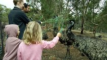 Full-Day Nature Tour from Perth, Western Australia, Full-day Tours