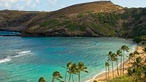 Oahu Grand Circle Island Tour with Japanese-Speaking Guide, Oahu, Nature & Wildlife