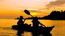 Bioluminescent Kayak Adventure from San Juan, Puerto Rico, Kayaking & Canoeing