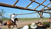 Day Ranch and Fiesta Gaucha in Santa Susana Ranch, Salta, Cultural Tours