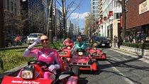 Osaka Go Kart Tour including Funny Costume Rental, Osaka, Private Sightseeing Tours