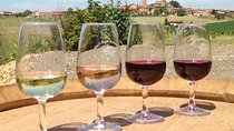 Beaujolais & Pérouges - From Lyon in small group tours, Lyon, Wine Tasting & Winery Tours