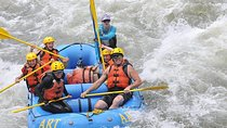 Intermediate Bighorn Sheep Canyon Whitewater Rafting Trip