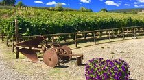 Chianti Wine and Vinci half day Tour from Montecatini Terme, Peterborough & the Kawarthas, Day...