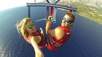 Four Adventures: Parasailing, Sharks and Stingray, Catamaran Cruise and Snorkeling from Punta Cana,...