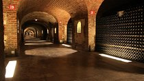 Small-Group Day Tour of Mot et Chandon and Taittinger with Champagne Tasting from Reims