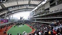 Hong Kong Horse Racing Tour, Hong Kong SAR, Seasonal Events