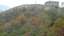 Mutianyu Great Wall Private Day Tour with English Driver, Beijing, Private Drivers