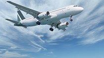 Malaga Airport (Costa del Sol) Private Arrival Transfer Tickets