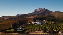 Stellenbosch, Franschoek and Paarl Winelands Tour from Cape Town, Western Cape, Day Trips