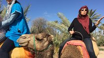 Camel Ride Tour in the Palm Grove of Marrakech, Marrakech, Nature & Wildlife
