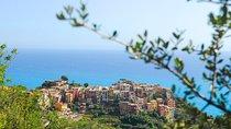 Cinque Terre Pesto Making Class, Boat Tour and Lunch from La Spezia, Cinque Terre, Day Cruises