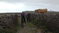 Explore the Burren on Electric Bikes, Galway, Day Trips
