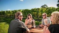 Martinborough Wine-Tasting Tour from Wellington, Wellington, City Tours
