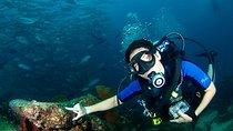 Discover Scuba Diving, Los Cabos, Scuba Diving
