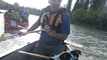 Full-Day Canoe Trip on the Takihini River, Whitehorse, Kayaking & Canoeing