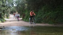 Small-Group Adventure: Cycling in Ria Formosa Natural Park Tickets