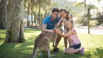 Paradise Country General Entry Ticket Including Barbeque Lunch, Gold Coast, Theme Park Tickets &...