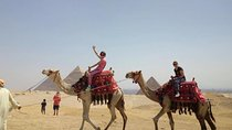 Full day Visit Giza Pyramids with Camel Ride and Lunch, Cairo, Nature & Wildlife