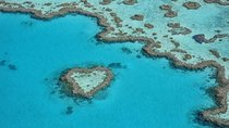 Reef and Island Scenic Flight from Airlie Beach, The Whitsundays & Hamilton Island, Air Tours