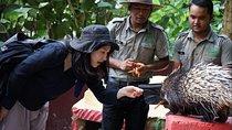 Langkawi Wildlife Park Admission Ticket, Langkawi, Zoo Tickets & Passes