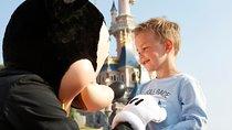 Private Transfer: Disneyland Resort Paris Tickets