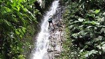 Waterfall Climbing Tour from Jacó, Jaco, Climbing