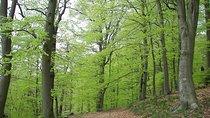 Paklenica National Park Admission Ticket, Dalmatia, Nature & Wildlife