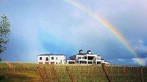 East Kelowna 6 Hour Wine Tour, Kelowna & Okanagan Valley, Wine Tasting & Winery Tours