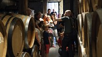 Brussels Brewery tour, Brussels, Beer & Brewery Tours