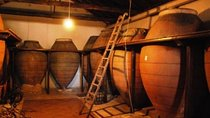 Madrid Region Wineries: Guided Tours and Tastings Tickets