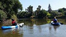 Napa River Eco Tour & Paddle Picnic, Napa & Sonoma, Eco Tours