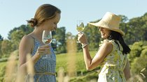 Yarra Valley Wine Tour with Lunch, Cider, Chocolate Tastings from Melbourne Tickets