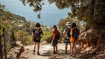 Mountains, Villages and a Hidden Beach Day Tour from Palma Tickets