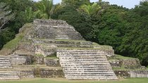 Altun-Ha Day Trip from San Ignacio, Belize, Archaeology Tours