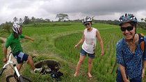 Best Culture Bike Tour in Bali, Ubud, Bike & Mountain Bike Tours