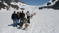 Juneau Helicopter Tour and Dogsledding Experience, Juneau, Helicopter Tours