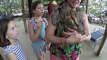 Roatan Monkey, and Sloths Sanctuary and Offshore Snorkel and Beach, Roatan, Snorkeling