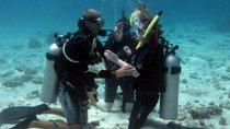 Open Water Course, Nha Trang, Scuba Diving