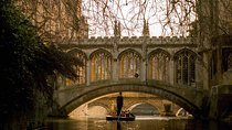 Shared Punting Tour in Cambridge, Cambridge, Day Cruises