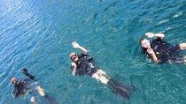 PADI Open Water Diver course, Grand Case, Scuba Diving