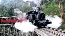 Puffing Billy & Wineries: Full-Day Tour from Melbourne, Melbourne, Full-day Tours