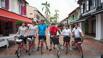 Small-Group Singapore Highlights Bike Tour Tickets